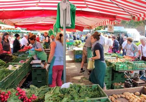 フランクフルトの下町のマーケット| Wochenmarkt Höchst